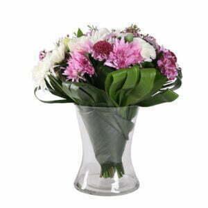 משלוחי פרחים בראשון לציון, עלי דפנה