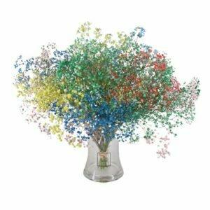 משלוחי פרחים בתל אביב, עלי דפנה